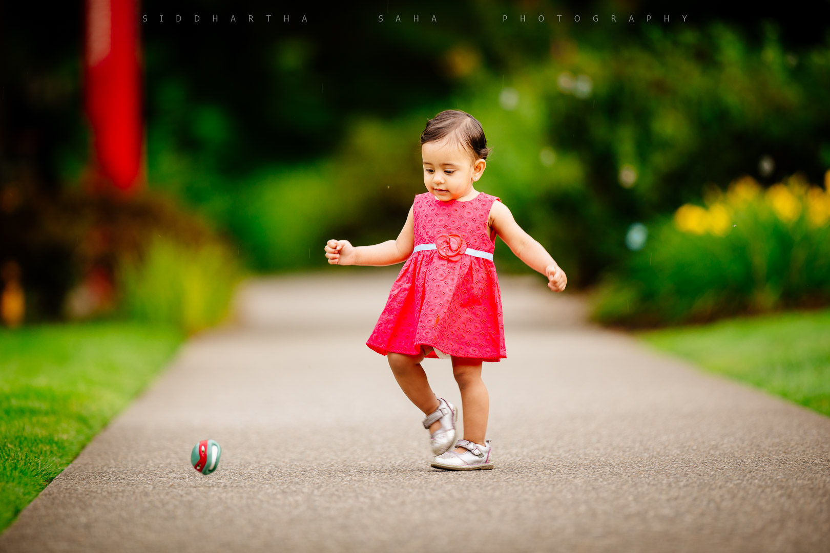 2015-08-08 - Padmaja Ketan Family Photoshoot - _05Y8764